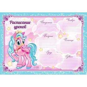 Расписание уроков А4 'Пони' Ош