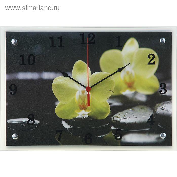 """Часы настенные прямоугольные """"Зеленый цветок на черном фоне"""", 25х35 см"""