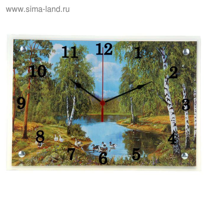 """Часы настенные прямоугольные """"Утки в реке"""", 25х35 см"""
