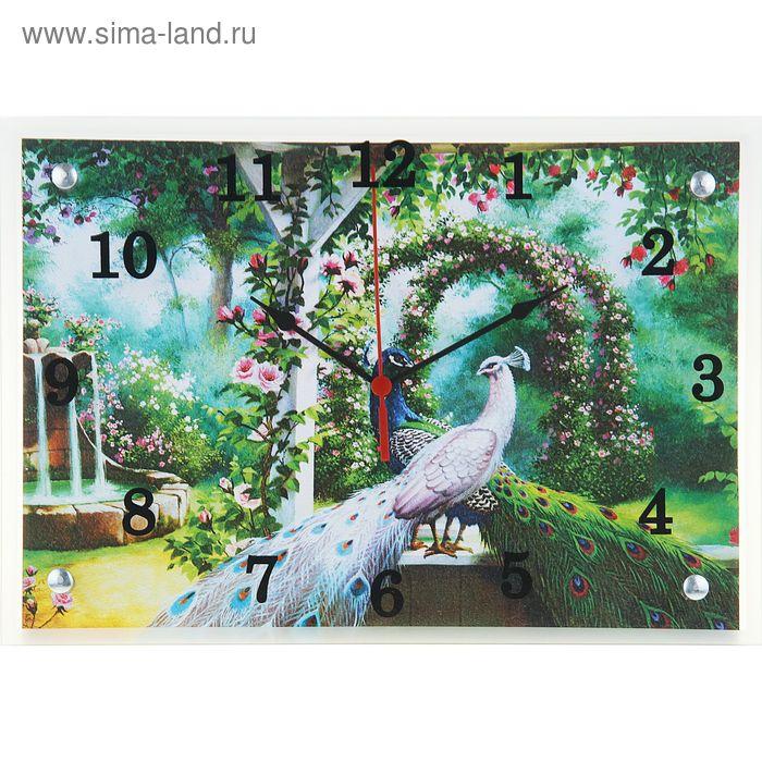 """Часы настенные прямоугольные """"Павлины в саду"""", 25х35 см"""