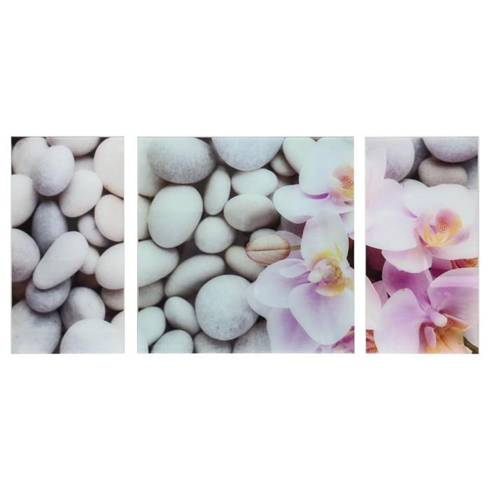 """Модульная картина на стекле """"Цветы на камнях"""", 2 — 25×50 см, 1 — 50×50 см, 100×50 см"""