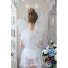"""Карнавальный набор """"Маленькая фея"""", 4 предмета: юбка, крылья, ободок, жезл, 3-4 года"""