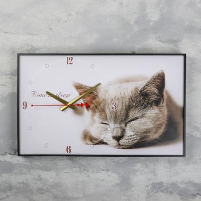"""Часы настенные, серия: Животные, """"Серая кошка"""", 37х60 см микс"""