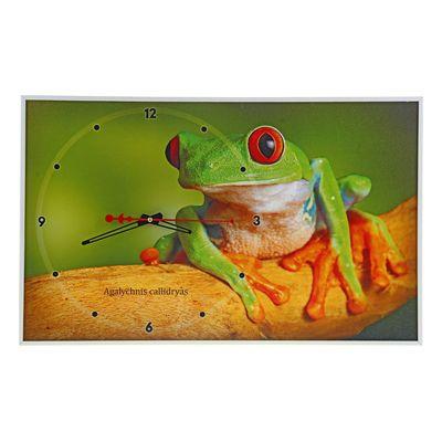 """Часы настенные, серия: Животные, """"Красноглазая древесная лягушка"""", микс 37х60 см"""