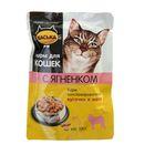 """Влажный корм """"Васька"""" для кошек, кусочки в желе, ягненок, пауч 100 г"""