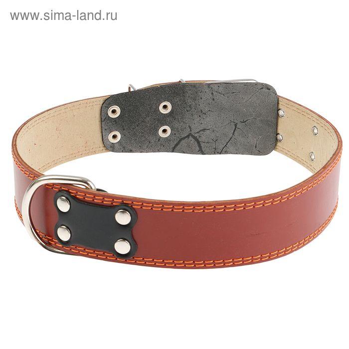 Ошейник кожаный с подкладом, 82,5 х 4,5 см, с выносным кольцом микс цветов