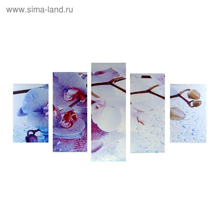 """Модульная картина на холсте с подрамником """"Морозная орхидея"""""""