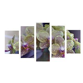 """Модульная картина на подрамнике """"Экзотическая орхидея"""""""