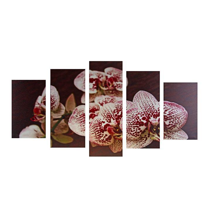 """Модульная картина на подрамнике """"Нежная орхидея"""", 2 — 43×25, 2 — 58×25, 1 — 72×25 см, 72×125 см"""