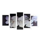 """Модульная картина на подрамнике """"Великолепная орхидея"""", 2 — 43×25, 2 — 58×25, 1 — 72×25 см, 75×135 см"""