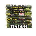 "Батарейка солевая ""Трофи"" Heavy Duty, ААА, R03-4S, спайка, 4 шт."
