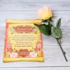 Роза со свитком–пожеланием «Признание в любви», 6,5 х 30 см