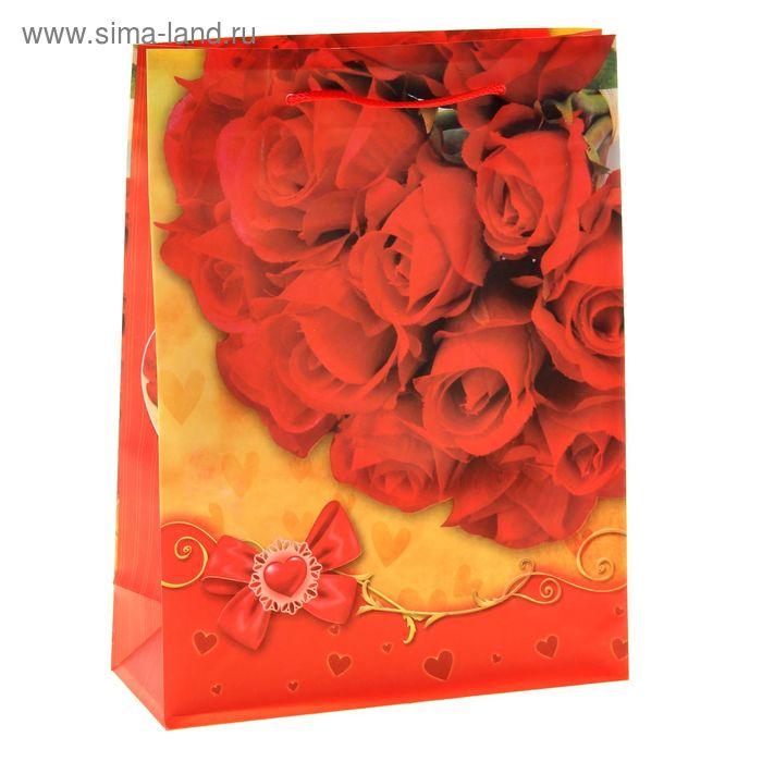 """Пакет пластиковый """"Алые розы"""""""
