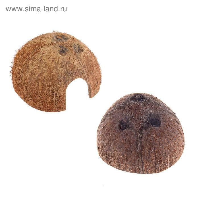 Скорлупа кокосовая 1/2, для рептилий и грызунов  микс