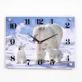 """Часы настенные, серия: Животный мир, """"Белые медведи"""", 30х40  см, микс"""