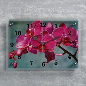 """Часы настенные, серия: Цветы, """"Розовая орхидея"""", 25х35  см, микс"""