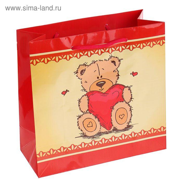 """Пакет подарочный """"Плюшевое сердце"""" 23х22,5х10 см"""