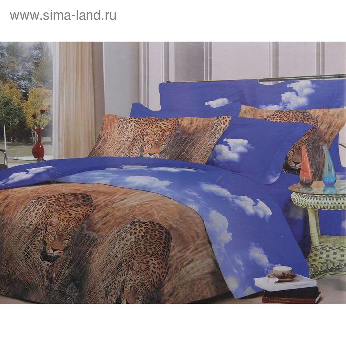 Постельное бельё La noche d`Amor евро, рис. 676, размер 200х215 см, 240х214 см, 50х70 см - 2 шт.