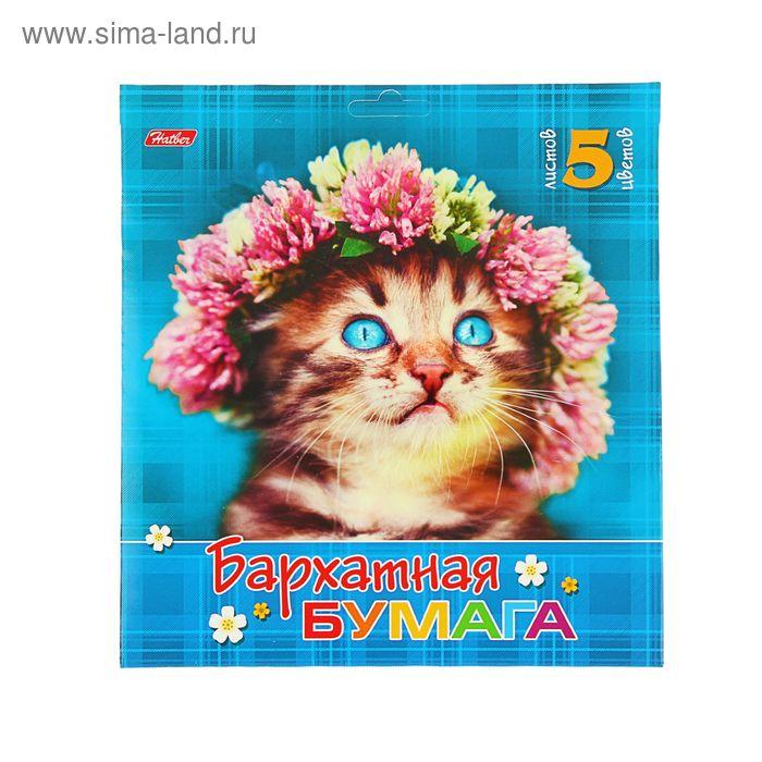 """Бумага цветная бархатная А5, 5 листов, 5 цветов """"Милый котик"""" 170*180мм"""