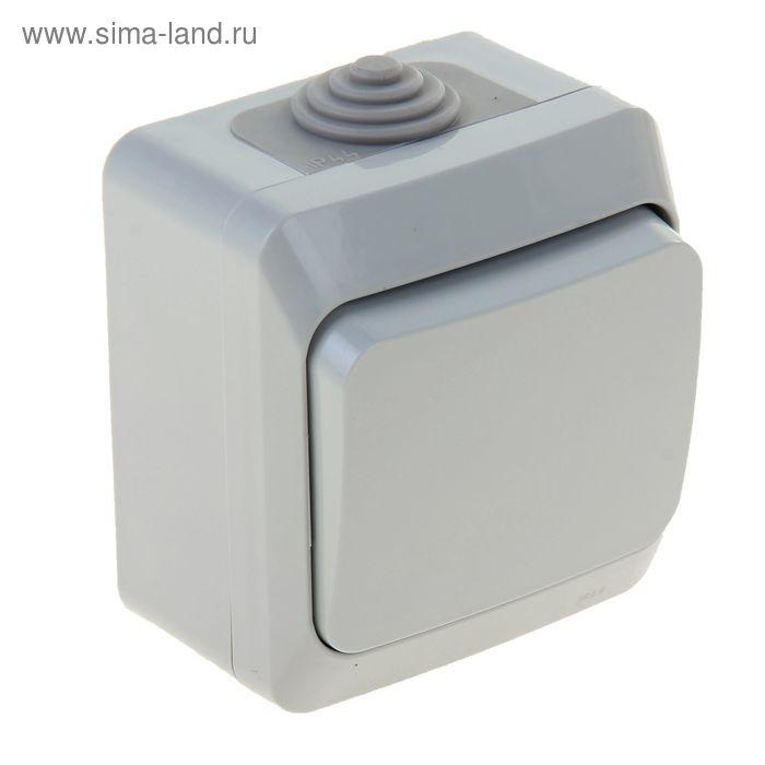 Выключатель одноклавишный наружный, серый, IP44