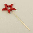 """Вставка """"Звезда-контур 5 лучей"""", красный блеск, 10 см"""