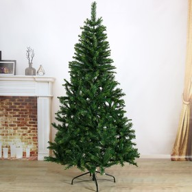 Tree Exclusive fibre, coloured lights, 240 cm, d bottom layer 120 cm 950 branches
