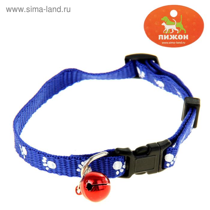 """Ошейник """"Лапки"""" 30 х 1 см, полиэстр, синий"""
