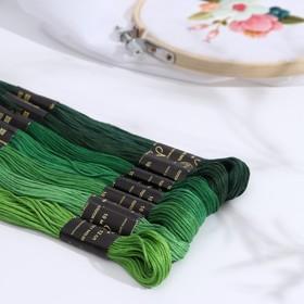 Набор ниток мулине 'Цветик-Семицветик', 10±1м, 7шт, цвет зелёный Ош