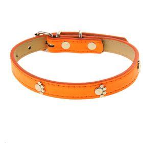 """Ошейник """"Неон"""" с лапками, 40 х 1,5 см, оранжевый"""