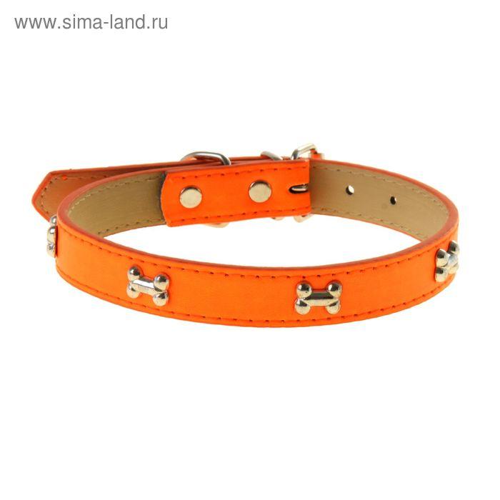 """Ошейник """"Неон"""" с косточками, 48 х 2 см, оранжевый"""
