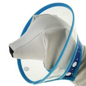 Ветеринарный воротник на клепках с мягким горлом, обх. шеи 14/16 см, высота10 см,микс цветов
