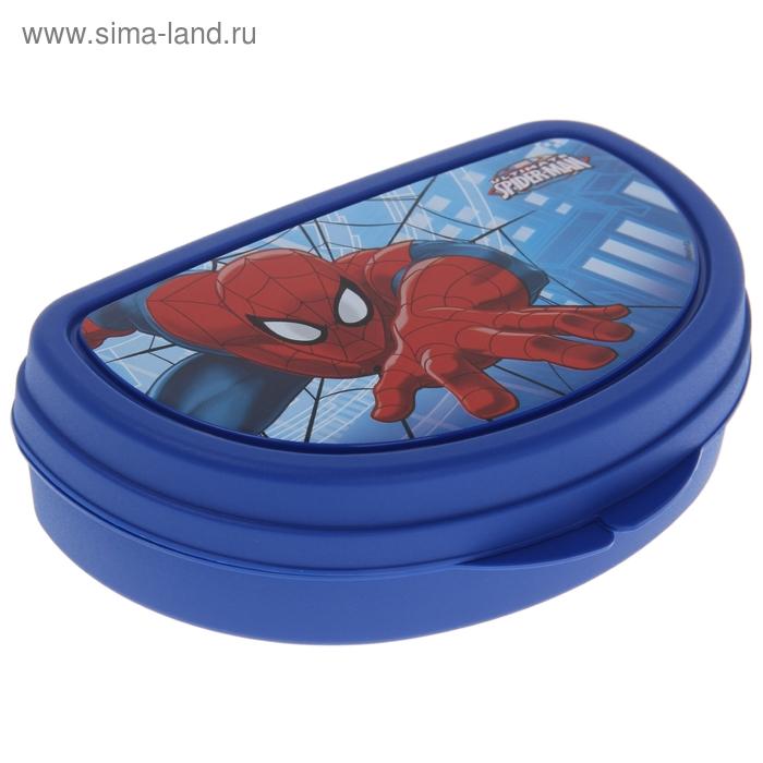 """Контейнер для бутербродов """"Человек-паук"""", цвет МИКС"""