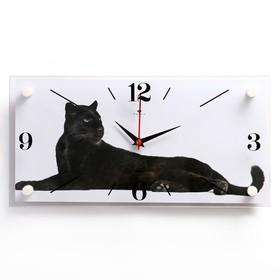 """Часы настенные, серия: Животный мир, """"Пума"""", 19х39 см"""