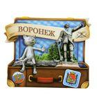 Магнит в форме чемодана «Воронеж»