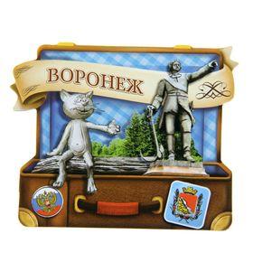 Магнит в форме чемодана 'Воронеж' Ош