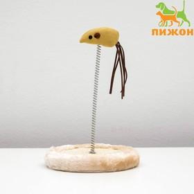 Игрушка мышь на пружине, 22 х 13 см