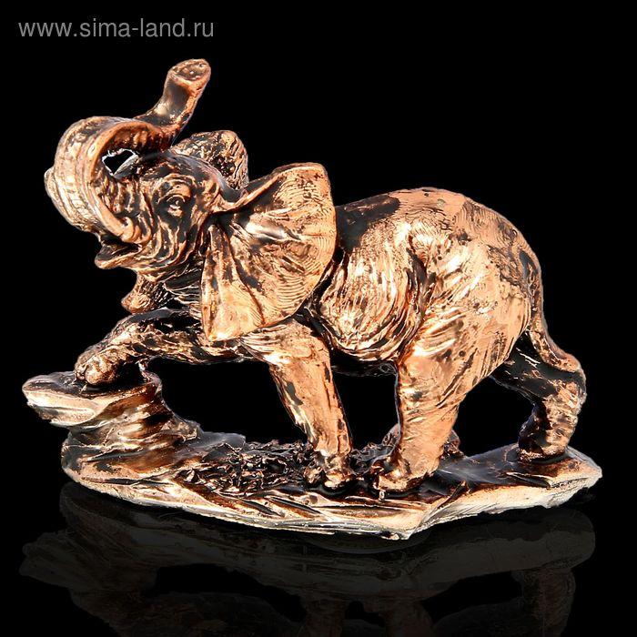 """Сувенир """"Слон с поднятым хоботом"""" бронза"""