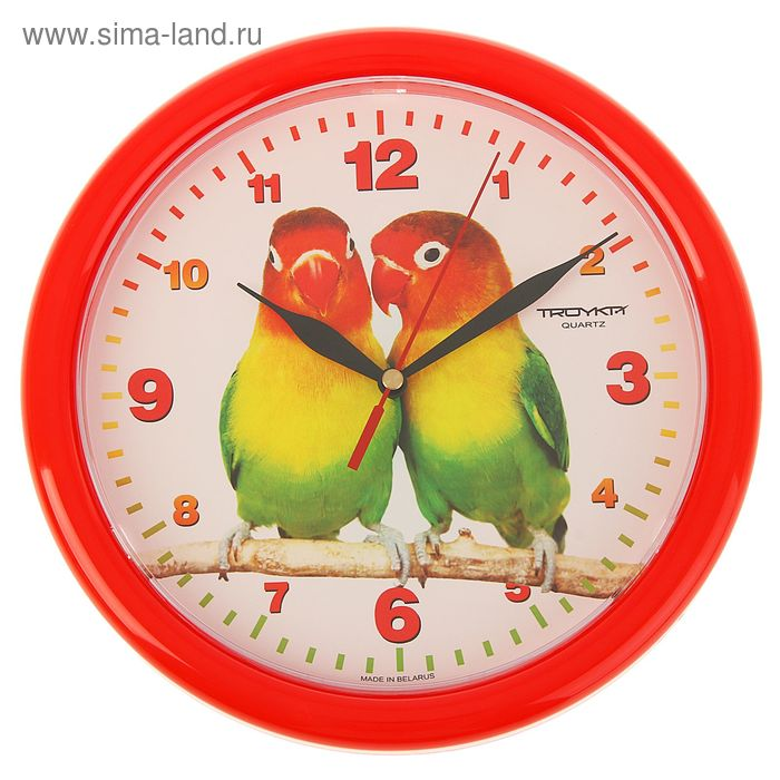 "Часы настенные круглые ""Парочка попугаев"", красный обод, 24х24 см"