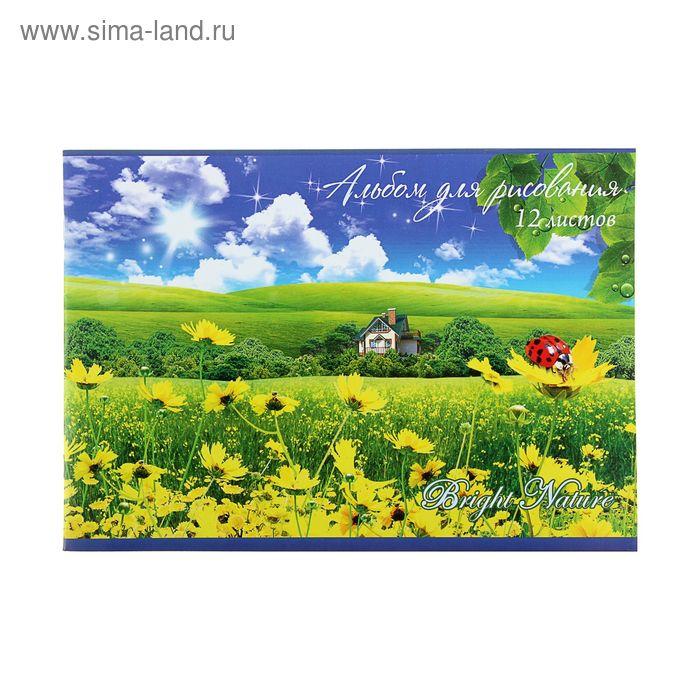 Альбом для рисования А4, 12 листов на скрепке Bright Nature, обложка картон 170-190г/м2, с блестками, блок офсет 100г/м2, МИКС
