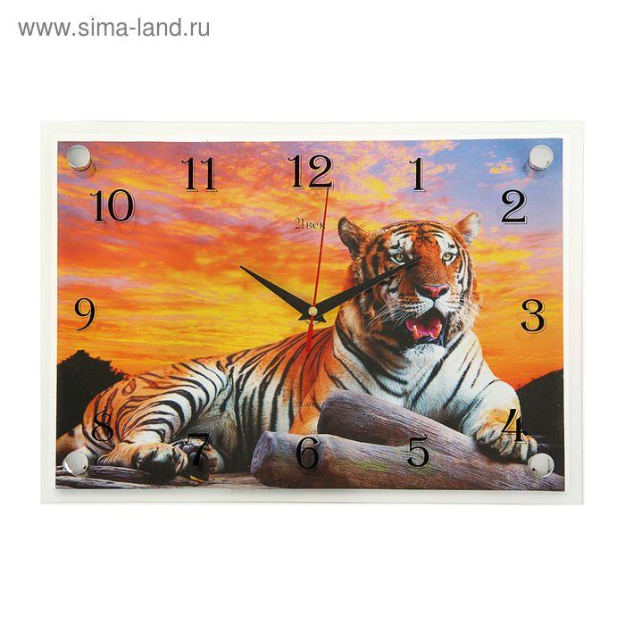 "Часы настенные прямоугольные ""Тигр"", 25х35 см"