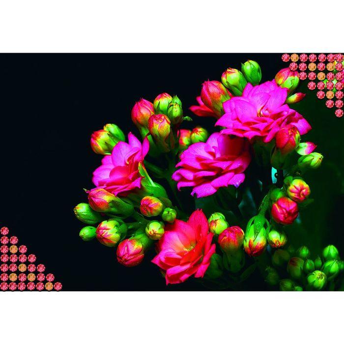 """Алмазная вышивка с полным заполнением """"Цветы"""", 22 х 32 см"""