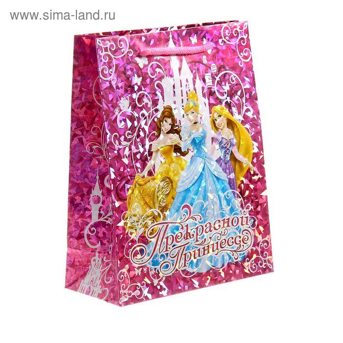 """Пакет голография вертикальный """"Прекрасной принцессе"""", Принцессы, 18 x 23 см"""