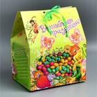 "Коробка подарочная ""Волшебные праздники"": Феи, 20 х 15 х 22 см"