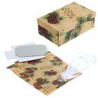 Подарочная коробка «Шишки», набор для декора, 21 × 30 см