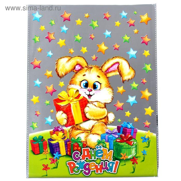 Пакет подарочный пластиковый с днём рождения «Зайка», 24,4 х 32 см