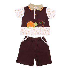 Комплект для мальчика (футболка+шорты) 'Черепашка', рост 74-80 см (6-9 мес.), цвет коричневый Ош