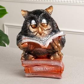 Копилка 'Читающая сова', микс Ош