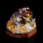 """Копилка """"Денежная жаба"""" большая, бронза"""