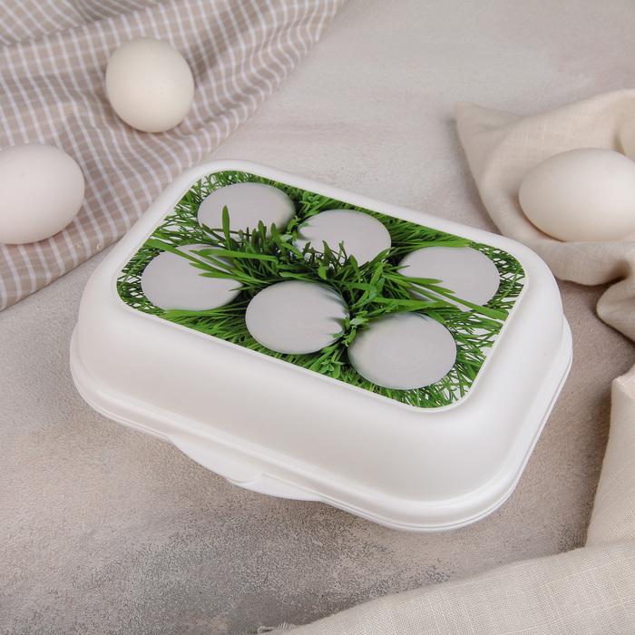 Контейнер для яиц, цвет МИКС