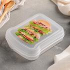 Контейнер для бутербродов, цвет МИКС